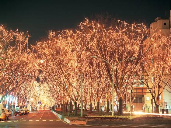 Sendai City Pageant of Starlight Sendai Miyagi Japan