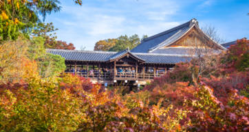 autumn leaves at Tofukuji Temple
