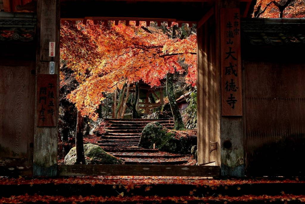 autumn at Ushitakisan Daitokuji, Osaka